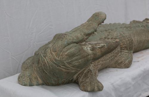 """Alligator (Head Turned) - 33"""""""