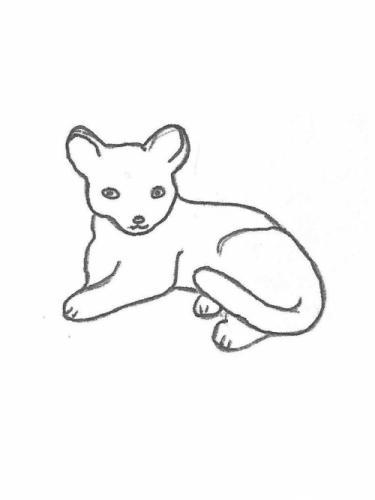 "Cat Lying - 12"" long"