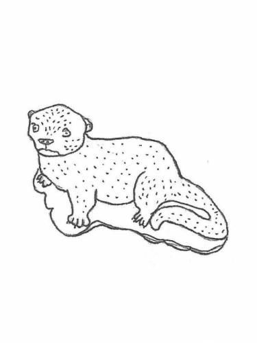 """Otter - 16"""" long"""
