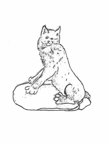 "Bobcat - 10"""