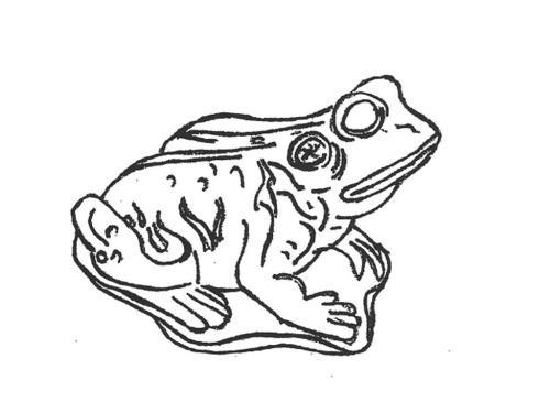 Frog - 20""