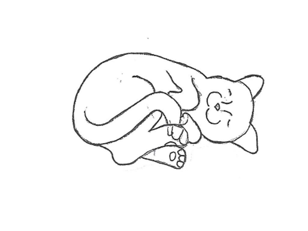 """Curled Cat - 10"""""""