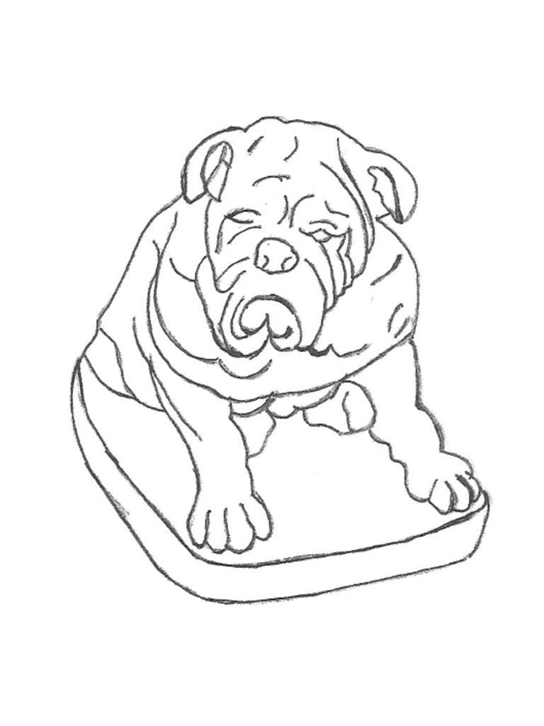 "Bulldog - 19"""