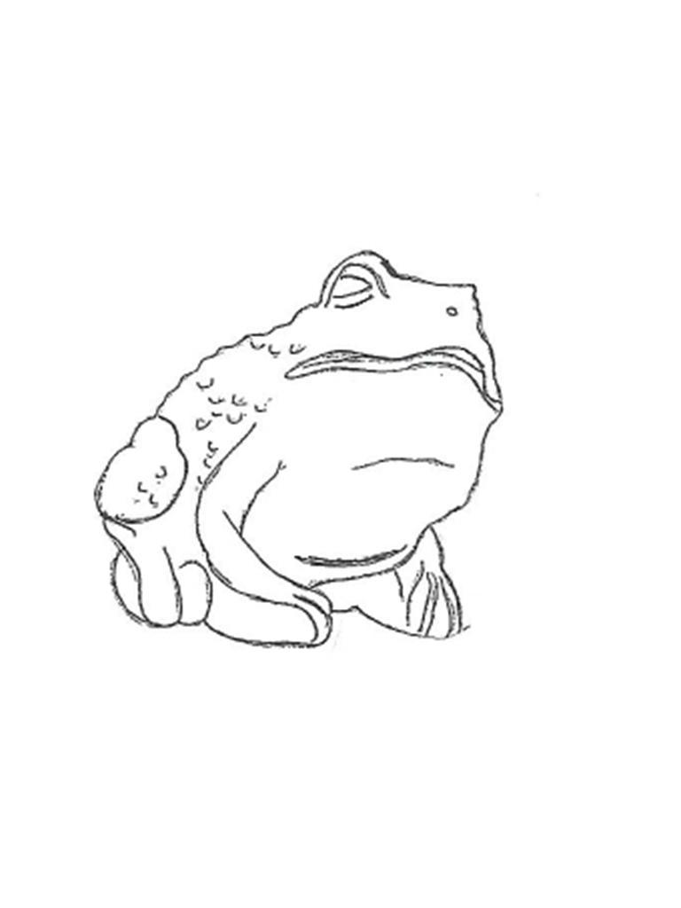 """Bullfrog - 4"""""""