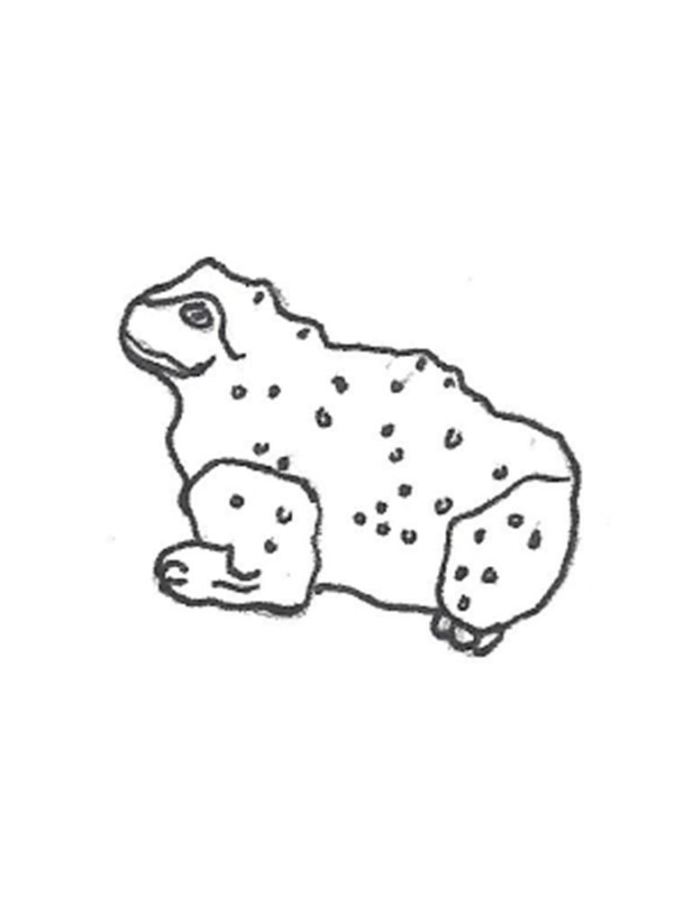 "Bumpy Frog - 7"""