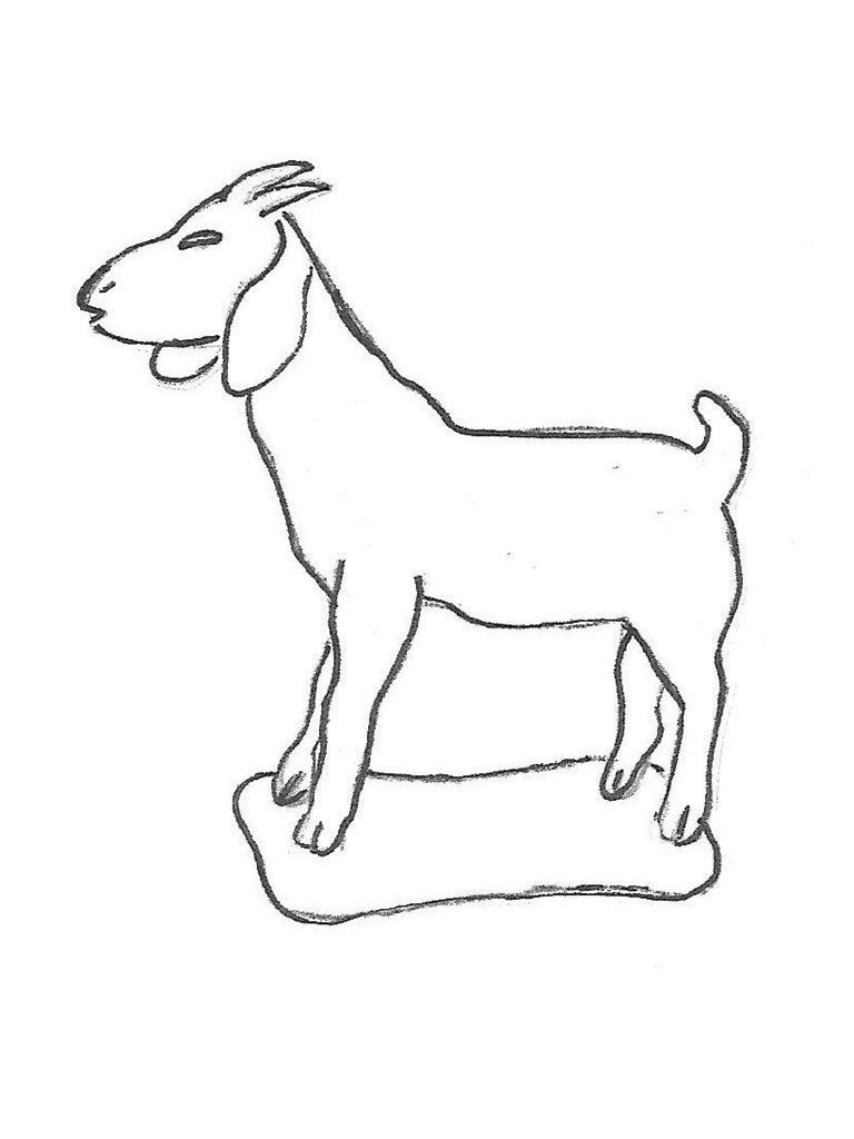 "Goat - 30"""