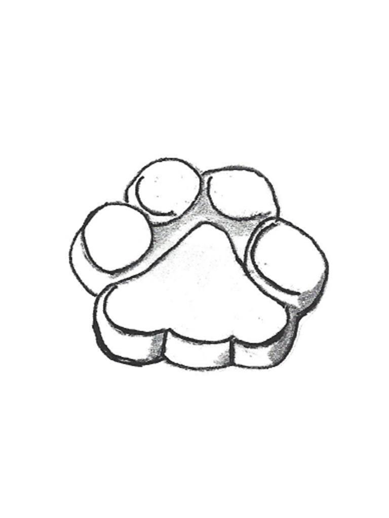 "Small Paw Print - 10"""