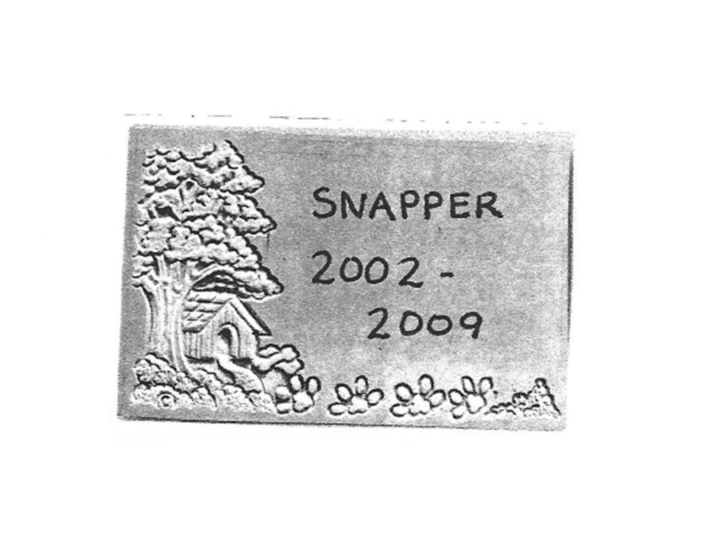 Custom Snapper Memory Stone