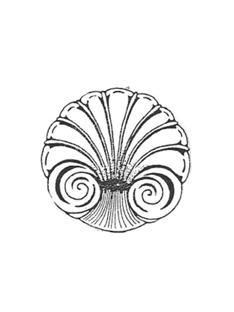 "Seashell Bowl - 20"" diameter"